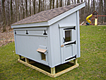 Back View of Chicken Coop